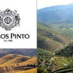 Ramos Pinto Wines