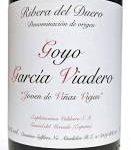 Goyo Garcia Viadero Joven de Vinas Viejas